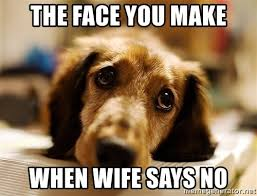 Puppy Face Meme - the face you make when wife says no sad puppy when your wife says