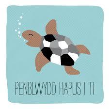 welsh turtle happy birthday card penblwydd hapus i ti u2013 allihopa