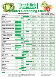 Garden Layout Planner Vegetable Garden Layout Planner App The Best Images About Planning