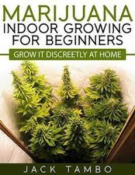where to buy indoor grow lights 138 best led grow lights images on pinterest led grow lights grow
