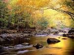 Little River Autumn Great