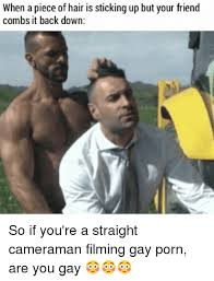 Gay Friend Meme - when a piece of hair is sticking up but your friend combs it back
