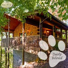 One Bedroom Cabins In Pigeon Forge Tn 40 Best Pet Friendly Cabins Images On Pinterest Pet Friendly