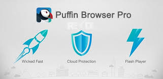 puffin pro apk puffin browser pro 6 0 5 15703 apk for android