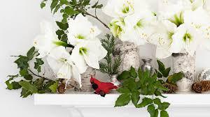 beautiful flowers arrangements and flower hacks