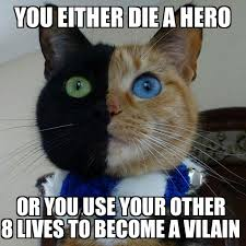 Two Face Meme - two face cat beheading boredom