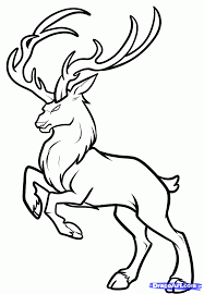 buck deer coloring pages clipart panda free clipart images