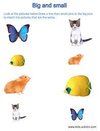 free preschool opposites worksheets u0026 printables