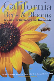 plants for native bees black and yellow friday gifts for bee gardeners the bee