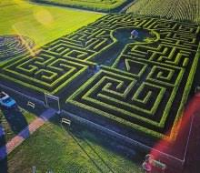 corn mazes and fall farm for island mommypoppins