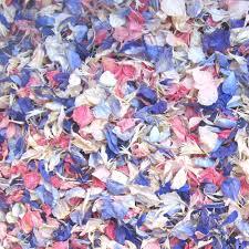 real petals pre mixed rainbow delphinium petals real flower petal confetti co