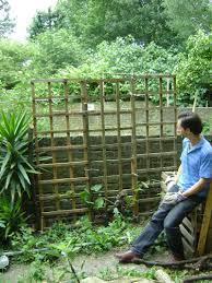 trellis hackney permaculture
