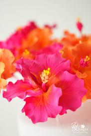 best 25 hibiscus cake ideas on pinterest hawaiian cakes