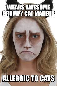 Make Up Meme - grumpy cat makeup tutorial halloween costumes blog