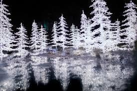 vancouver christmas light maze enchant christmas light maze market montecristo