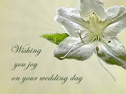 simple wedding wishes wedding wishes card white azalea photograph by nature