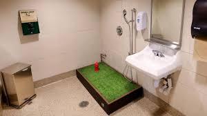 bagno per cani sapevate dell esistenza di bagni per cani negli aeroporti i