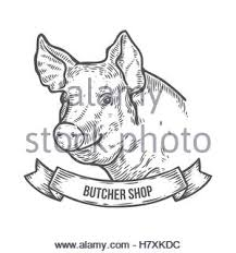 pig head butcher shop hand drawn sketch in a graphic style