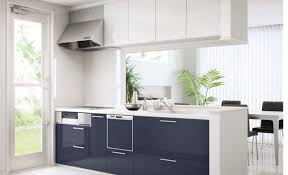 Ikea Hack Kitchen Cabinets Cabinet Plywood Kitchen Cabinets Alluring Kitchen Cabinet Design