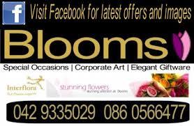 dundalk florist blooms flowers dundalk