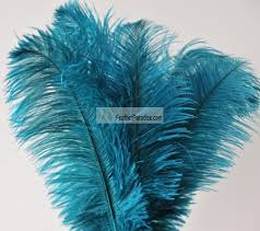 Ostrich Feather Centerpieces Wholesale by Teal Ostrich Feathers Wholesale Dozens Bulk 16 18 Inch 50 Pieces