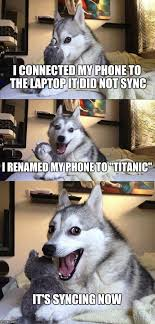 Dog Phone Meme - bad pun dog meme imgflip