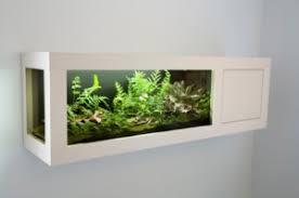 terrariums mini terrarium ideas terrarium plants habitats