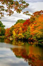 Fall Autumn by 1200 Best My Seasons Images On Pinterest Autumn Fall Autumn