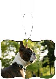 it s boston terrier time collection on ebay