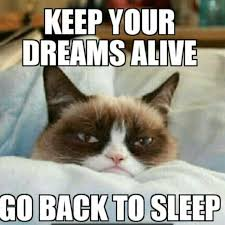 Mere Cat Meme - keep your dreams alive go back to sleep grumpy cat pinterest