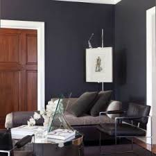 extraordinary paint color ideas interior designs with rough hewn