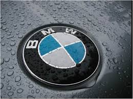 lion car symbol 128 best bmw logo images on pinterest bmw logo car and brochures