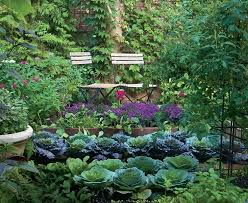 Garden Allotment Ideas Veg Garden Best Vegetable Garden Design Ideas On Allotment Design