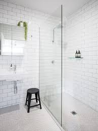 bathroom remodel ideas pictures 75 bathroom design ideas renovations photos design ideas