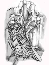 line drawing owl willow tree flash