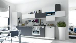 Ideas For Small Kitchens In Apartments Masculine Small Apartment Kitchen Ideas L Shaped Cabinetssmall
