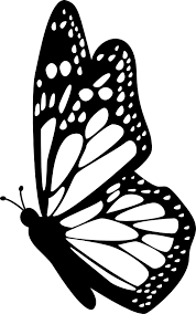 butterfly side view with detailed wings free icon pinteres