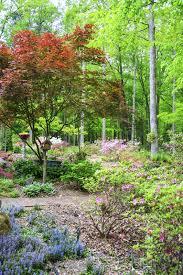 tips on gardening in zone 7 u2013 garden tips for zone 7 regions