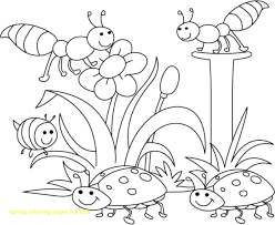 coloring pages to print spring spring coloring pages printable for kids with bugs free