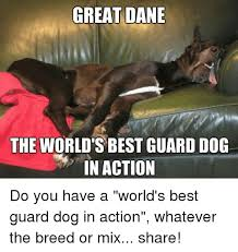 World S Best Memes - great dane labor meme dane best of the funny meme