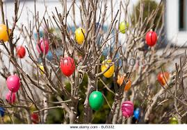 Easter Egg Tree Decorations by Easter Egg Tree Stock Photos U0026 Easter Egg Tree Stock Images Alamy