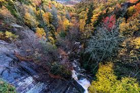 fall foliage predicts alabama county roads