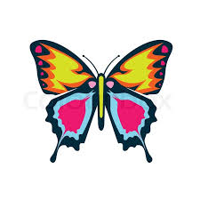 colourful butterfly vector illustration stock vector colourbox