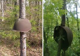 world war ii stuck in russian trees slavorum