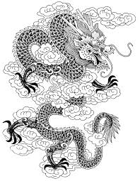 25 dragon pictures ideas dragons dragon face