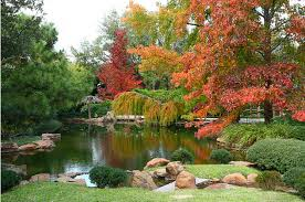Botanical Gardens Ft Worth My New Outside Fort Worth Botanical Gardens Soothe Your Soul
