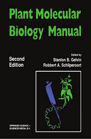 lab bench molecular biology plant molecular biology manual