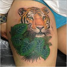 tiger cover up by yelp