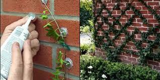 Garden Design Garden Design With Cheapest Diy Garden Ideas You Diy Garden Design