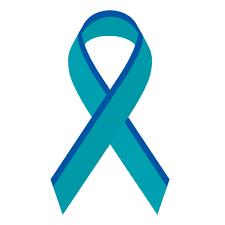 teal ribbon ribbon spinabifidaassociation org